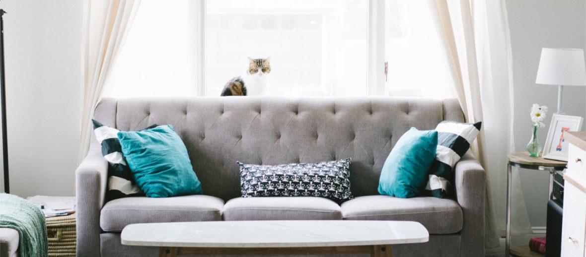 Jak bezpiecznie wynająć mieszkanie? Najem okazjonalny a najem zwykły